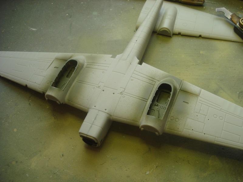 Underside of the wings